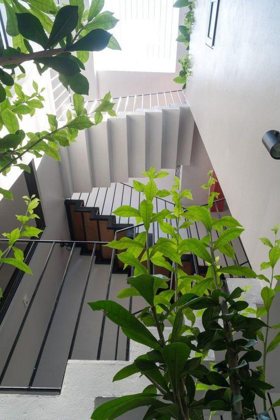 Thiết kế giếng trời cầu thang kết hợp cây xanh